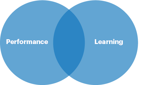 The relationship between performance and learning